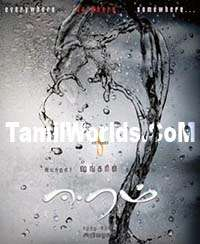 Eeram 2009 Tamil Movie Audio Songs
